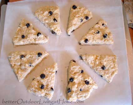 blueberry-orange-scones5