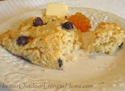 blueberry-orange-scones8