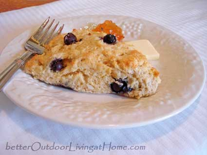 blueberry-orange-scones9