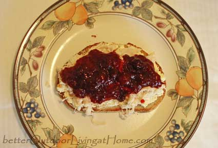 turkey-sandwich-cranberries