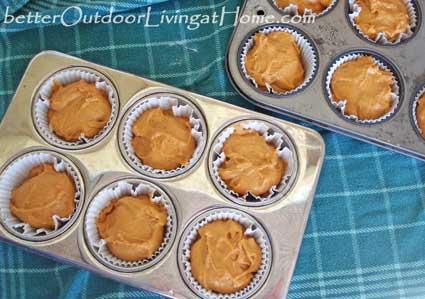 Pumpkin-Muffin-batter-in-muufin tin