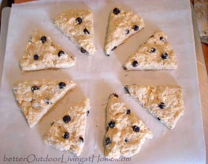 blueberry-orange-scones5