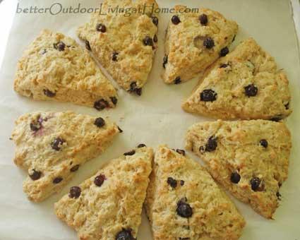 blueberry-orange-scones7