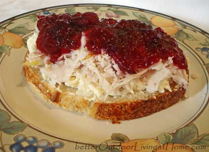 turkey-cranberries-sandwich